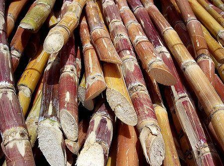 dulces-tipicos-de-venezuela-3