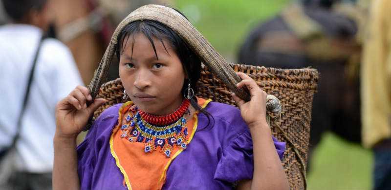 Indígenas Colombianos : Historia, Características