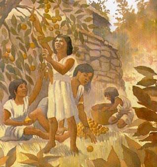 indigenas-venezolanos-2