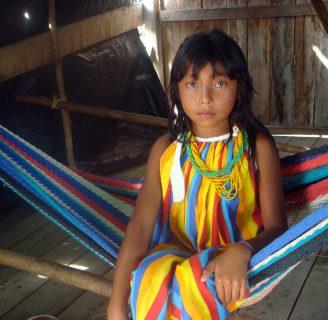 Indígenas venezolanos: historia, cultura, pueblos, fiestas, y más.