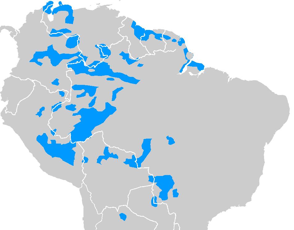 los-arawacos-en-venezuela-14