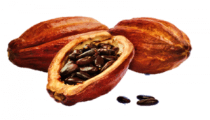 chocolate nahuatl