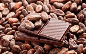 Tipos de cacaos nahuatl