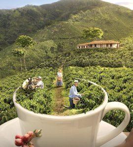 Patrimonio-Cultural-de-Colombia-paisaje-cultural
