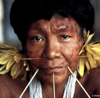 Indígenas caribes: todo lo que necesita saber.