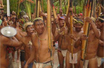 rituales indígenas colombianos