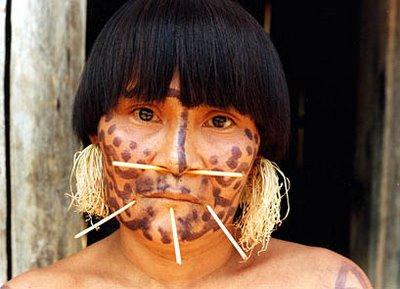 Áreas culturales indígenas de Venezuela