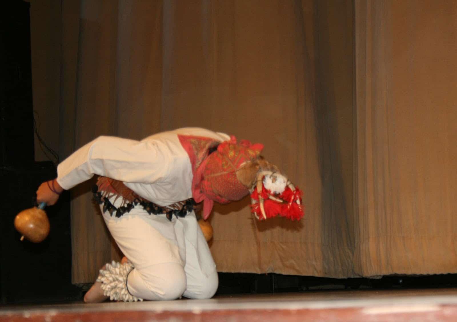 Música e instrumentos de la Danza del Venado:
