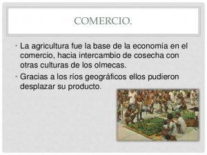 Comercio de la Cultura Olmeca: