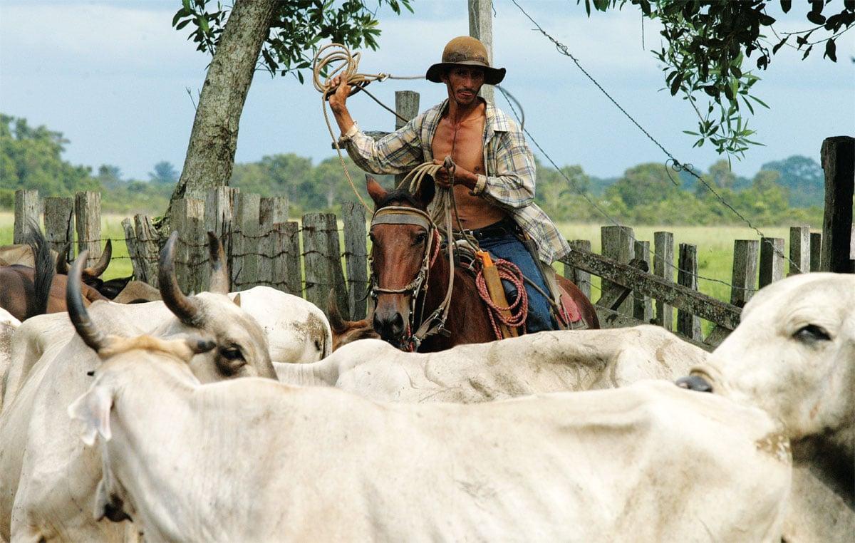 Regiones culturales de Colombia