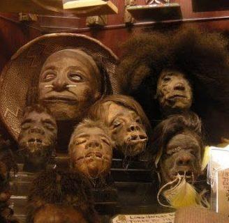 Tzantza: todo lo que necesita conocer sobre este mítico ritual.