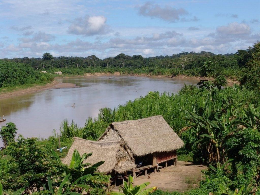 amazonia lugar de las danzas de la selva