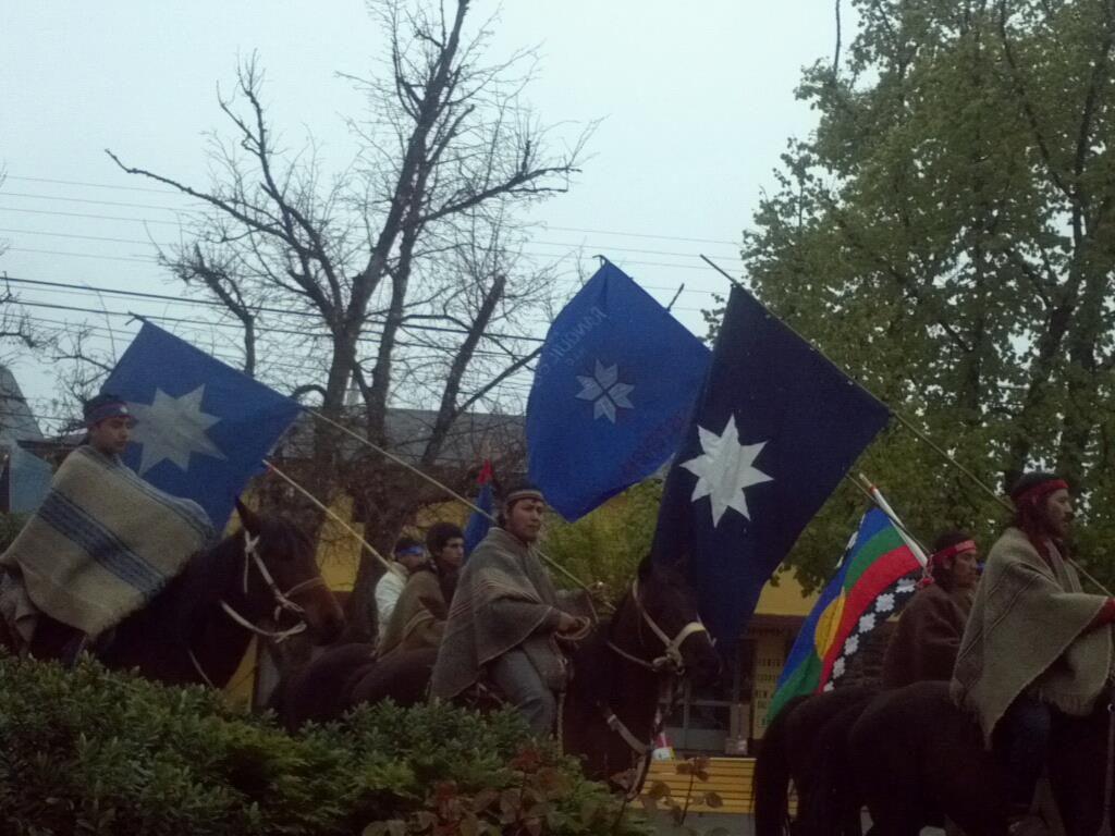 banderas mapuche