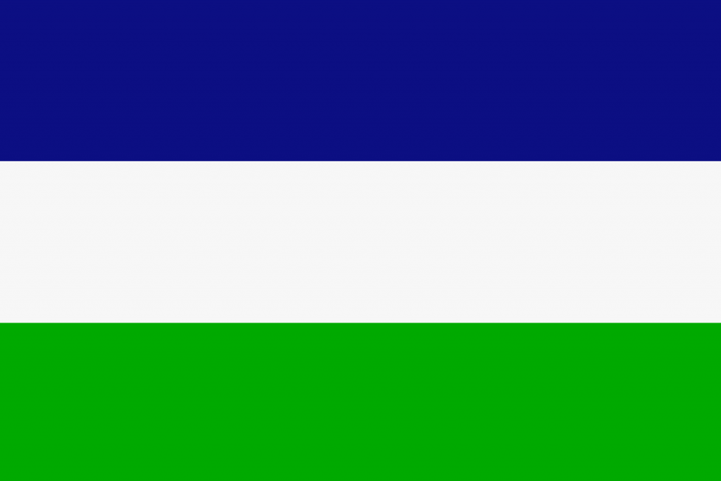 mapuches bandera
