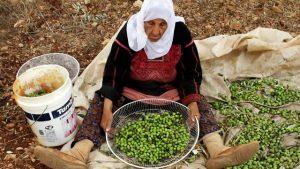 gente de palestina