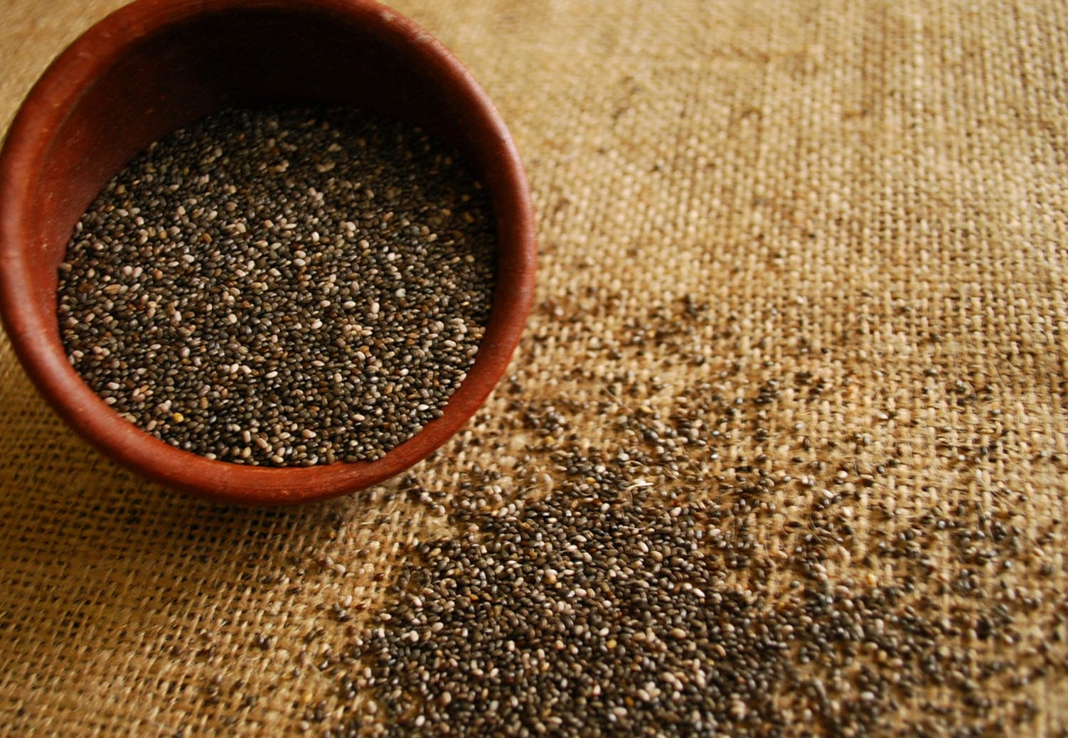control de hambre de semillas de chia