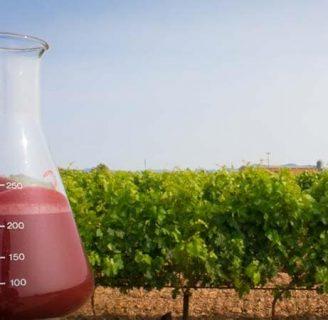 Fertilizantes líquidos: orgánicos, caseros, y mas