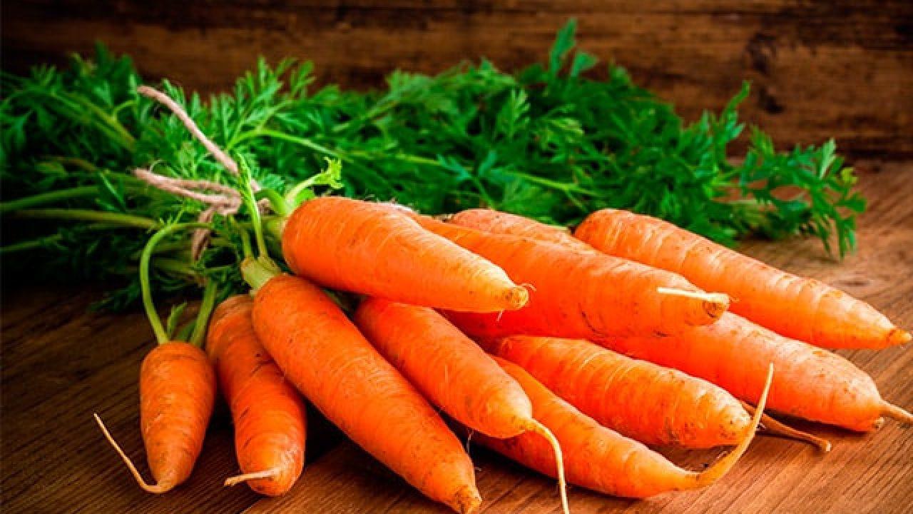 Sabe Como Sembrar Zanahorias Descubralo Aqui Por esta razón, en la entrada de hoy. sabe como sembrar zanahorias