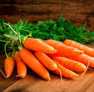 ¿Sabe Como Sembrar Zanahorias? Descubralo Aquí