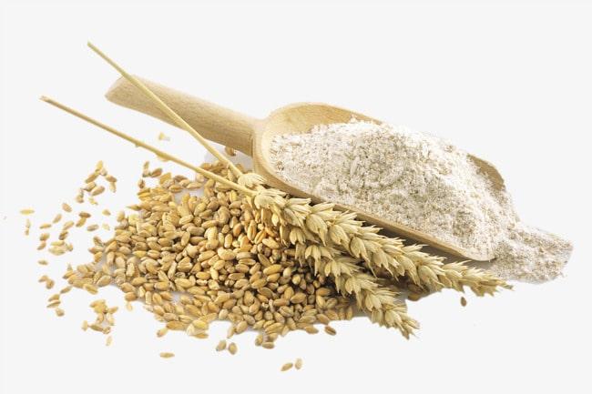 las semillas de trigo