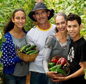Descubre todo sobre la Agricultura Familiar y su importancia