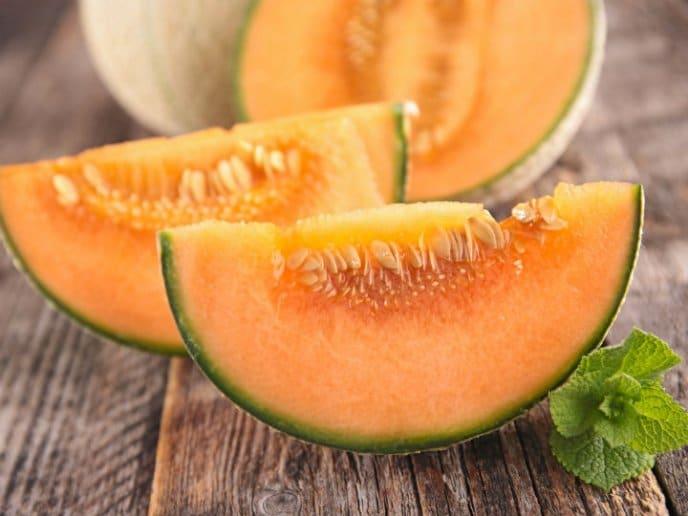 Como Sembrar Melon 3