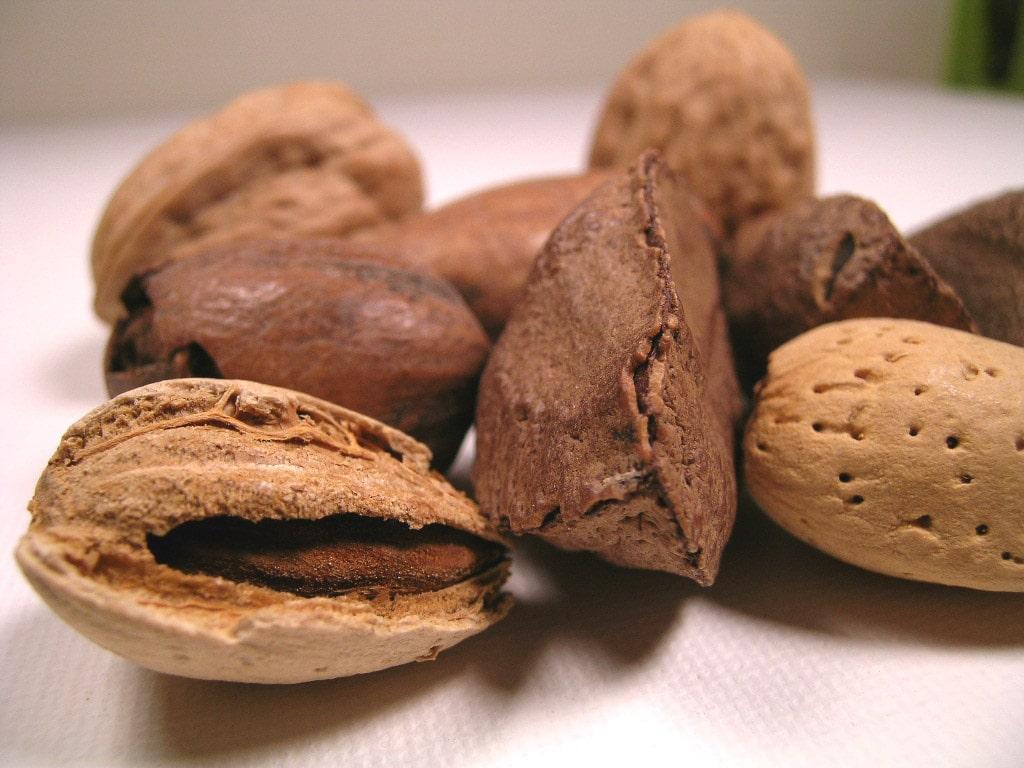 Semillas saludables para bajar de peso