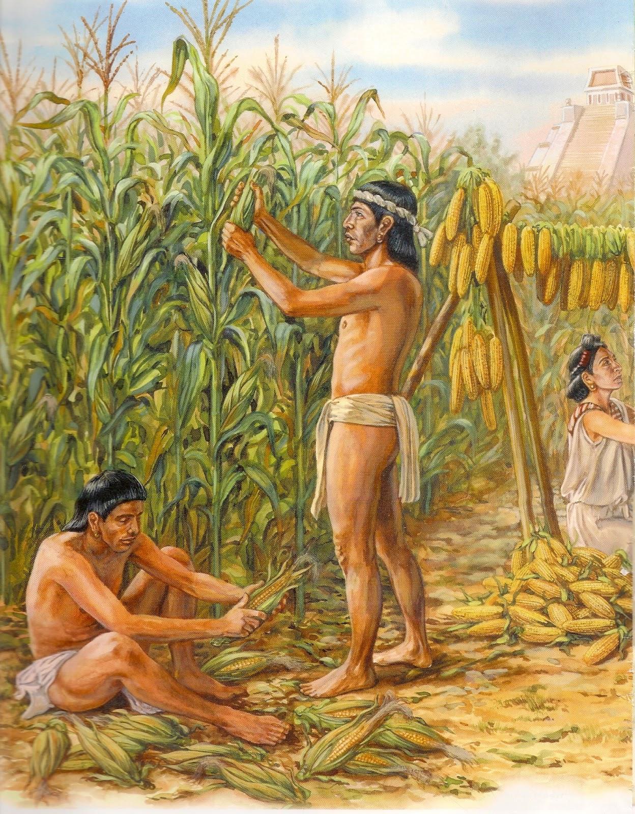 Aprende Todo Sobre La Agricultura Azteca