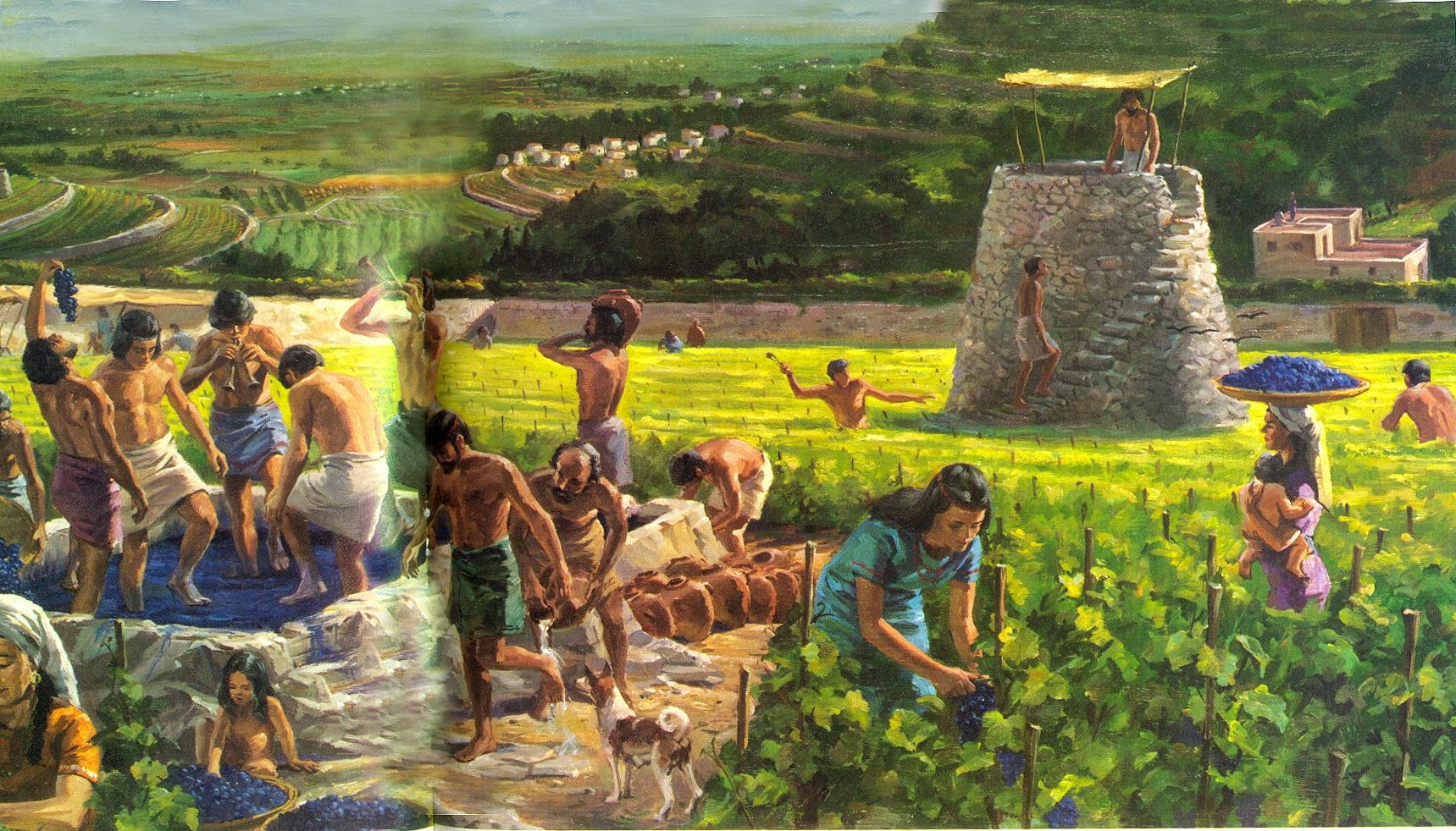 agricultura maya 1