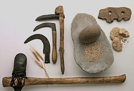 agricultura maya 4