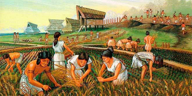 Aprende Todo Sobre La Agricultura Maya