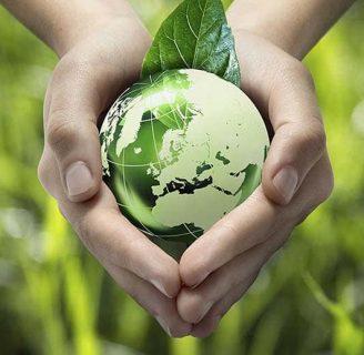 Agricultura Ecológica: lo que aun no sabes sobre este tipo de practica agricola