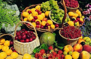 fruticultura 2