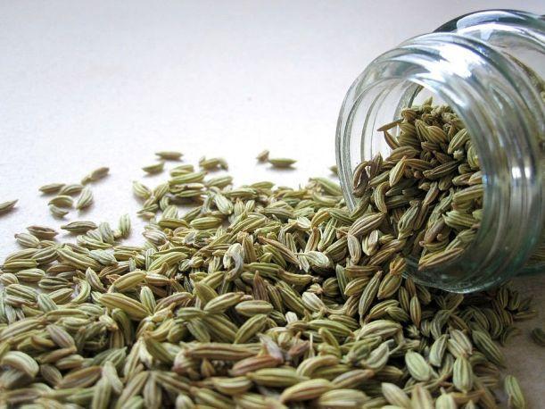 semillas-de-hinojo-10