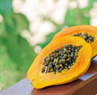 Semillas de Papaya: propiedades, beneficios, contraindicaciones y más