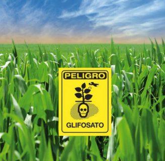 Glifosato: Nombre comercial, qué es, para qué sirve y más