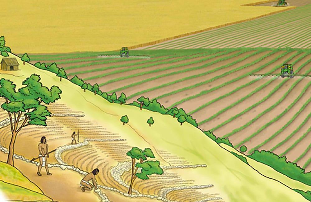 Historia de la Agricultura 1