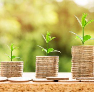 Descubre todo sobre la Renta Agraria y mucho más