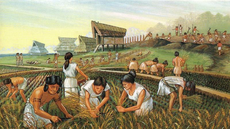 Surgimiento de la Agricultura 1