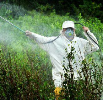 ¿Sabe qué es un Herbicida? Conoce más de este tema
