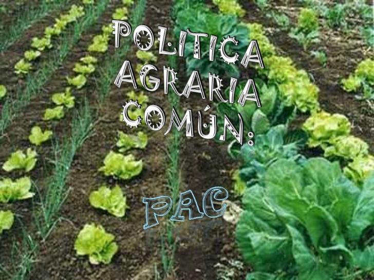 politicas agrarias