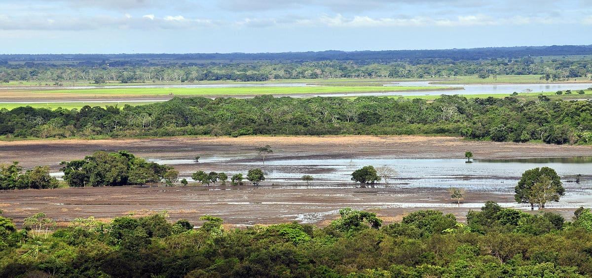 Region Orinoquia 1