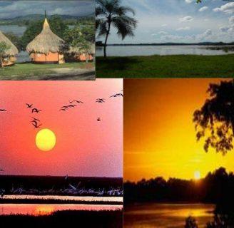 Región Orinoquia: Historia, características, ubicación y más