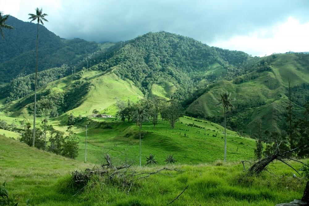 capitales de la region andina