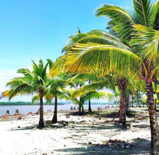 Costa Ecuatoriana: Características, cultura, vestimenta y más